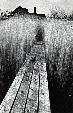 Jeanloup Sieff - The Black House, 1965