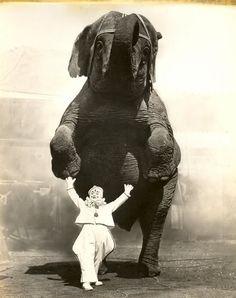 I wish the circus didn't make me think of animal abuse :(