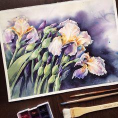 Elena (@ihappygirl) в Instagram: «Irises 30x40cm SALE  moulin du Roy paper 300 gsm  Друзья, спасибо вам большое за комментарии и…»