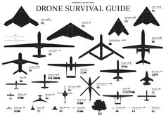 Created by Amsterdam-based designer Ruben Pater, the Drone Survival Guide is, on one side, a rough bird watcher's guide to the modern robot at war. The other side is a short section of printed survival tips, and the guides are available in Pashto, Dutch, German, Italian, Indonesian, Arabic, and English. http://dronesurvivalguide.org/