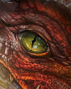 Preorder Legendary Dragons today to explore fabled dragons and discover new options for your world! Mythical Creatures Art, Fantasy Creatures, Dragon Eye Drawing, Arte Ninja, Cool Dragons, Fantasy Beasts, Dragon Artwork, Dragon Pictures, Fantasy Monster