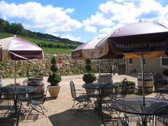 The beautiful landscaping and scenery at Wollersheim Winery may have you thinking that you are in Wine Country. Enjoy a glass in their wine garden.