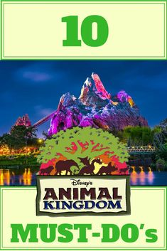 Top 10 Must Do's at Walt Disney World Animal Kingdom