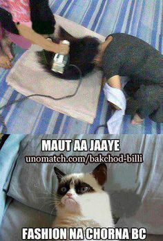 Funny Memes, Hilarious, Dil Se, Lol, Cats, Funny Stuff, Fictional Characters, Humor, Funny Things
