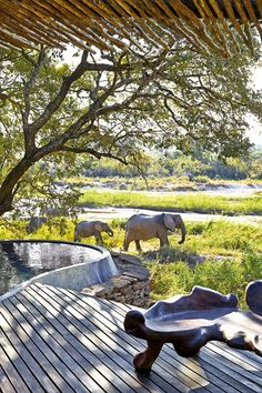 Singita Boulders safari lodge, South Africa (Condé Nast Traveller)