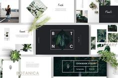FYLORA - Powerpoint Templateis Lookbook style Powerpoint Template with Minimal and Botanical Concept/Design