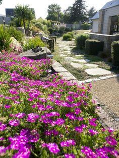 En Bretagne, le paysagiste Eric Lequertier a aménagé un espace vert en bord de mer autour d'un matériau local, le granit de Languédias. Le résultat ? Un jardin à dominante minéral, aux graphismes marqués et qui reste fleurit presque toute l'année.
