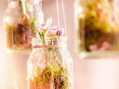DIY-Anleitung: Hängende Frühlingsblumen pflanzen via DaWanda.com
