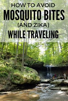 Travel in the Time of Zika: How to Avoid Mosquitos on the Road