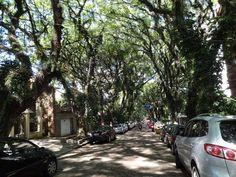 A rua mais bonita do mundo.