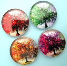 Four Seasons of Trees  Glass Magnet Set  by StuckTogetherMagnets, $6.45