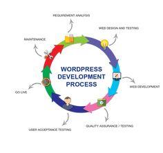 Wordpress Website Development, Website Development Company, Wordpress Website Design, Mobile App Development Companies, Mobile Application Development, Custom Website Design, Website Design Services, Domain Knowledge