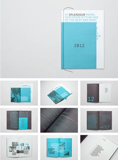 Splendour Paper Annual Report 2012 / by Tomas Sabbatucci