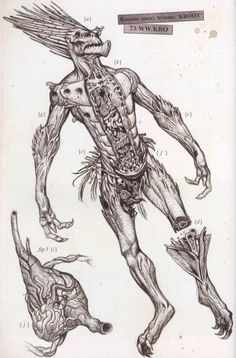 A autopsy of a kroot from the Warhammer universe