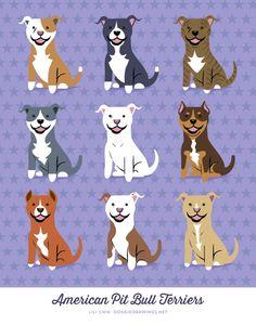 Uplifting So You Want A American Pit Bull Terrier Ideas. Fabulous So You Want A American Pit Bull Terrier Ideas. Perros Bull Terrier, Bull Terriers, Pitbull Terrier, American Pit, American Bully, Pitbulls, Pembroke Welsh Corgi, Art Graphique, Dog Art