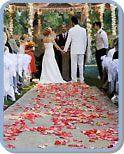 San Antonio and South Texas Outdoor Wedding Venues
