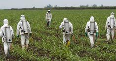 Πενταετής άδεια από την κυβέρνηση στο ζιζανιοκτόνο Roundup http://ift.tt/2FRnTqD
