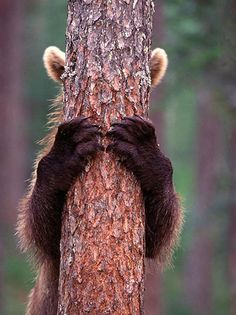 You can't see me ...