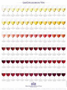 Les couleurs du vin > Bouchard Aîné & Fils