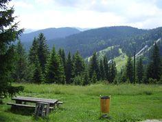 Igman mountain, Sarajevo, Bosnia and Hercegovina Sarajevo Bosnia, Real Estate Agency, Bosnia And Herzegovina, Travel Agency, Mountains, Natural, Real Estate Office, Nature, Bergen