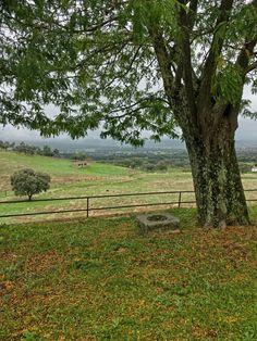 3 de nobiembre de 2014. Un dia lluvioso y otoñal. Extremadura.  España.