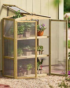 Mini greenhouse. $189.00