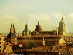 Aalamanca, vista de la catedral. Salamanca, cathedral