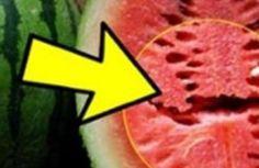 Para mantermos nossa saúde em dia, precisamos nos alimentar corretamente. Sempre usufruindo dos benefícios que uma alimentação saudável p...