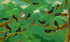 What did the huia bird sound like? Bird App, Beautiful Songs, Guy Names, Sounds Like, Habitats, Birds, Activities, Illustration, Painting