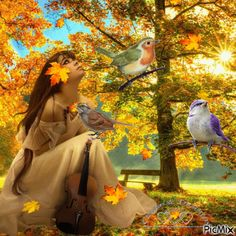 automne animated gifs - Page 6 Gif Pictures, Fall Pictures, Fall Wallpaper, Disney Wallpaper, Gif Bonito, Falling Gif, Nature Gif, Gif Photo, Beautiful Gif