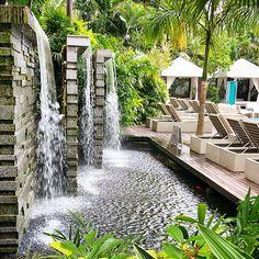Poolside the garden at Grand Hyatt Singapore. Photo courtesy of Jeff Ivan.