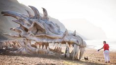 """""""This dragon's skull appears to have washed up on a shore — to the amazement of a dog walker. It was in fact a model installed at Charmouth beach on Dorset's Jurassic Coast to mark the third series of fantasy epic Game Of Thrones. Dragon Bones, Dragon Head, Dragon Art, Crane, Charmouth Beach, Dorset Beaches, British Beaches, Game Of Thrones Dragons, Jurassic Coast"""