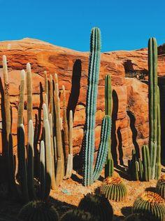 VSCO - #vscox #vsco #nature  | bradnathan Desert Aesthetic, Orange Aesthetic, Nature Aesthetic, Aesthetic Collage, Aesthetic Bedroom, Summer Aesthetic, Bedroom Wall Collage, Photo Wall Collage, Picture Wall