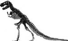 Dinozorların nasıl yok olduğu bilinememektedir. Bazı bilim adamları göktaşlarının Dünya ya çarpıp onları yok ettiği görüşündedir.