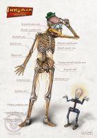 Gyro's anatomy - nervous system (inhuman anatomy series2) art by Alessandro Conti #inhumananatomy #disney #anatomy #alessandroconti