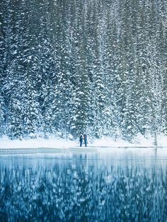 Snowy Lake Louise (B