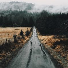 road, nature, and travel Bild Camping Photography, Mountain Photography, Landscape Photography, Wanderlust, Camping Places, Tumblr, Jolie Photo, Roadtrip, Amazing Nature