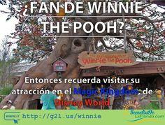 Las aventuras de Winnie The Pooh en Magic Kingdom parque de Walt Disney World es una tierna atracción para los más pequeños. Sin embargo los adultos también podrán pasar un momento entretenido en esta atracción ==> http://g2l.us/winnie