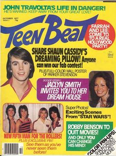 I loved Shaun Cassidy and Parker Stevenson! And....Robbie Benson and Leif Garrett. :)