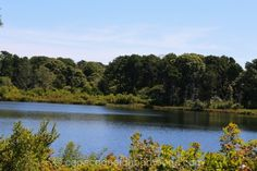Cape Cod Pond Homes For Sale