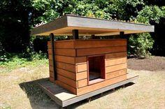 11 DIY Pallet Doghouse Ideas   DIY to Make