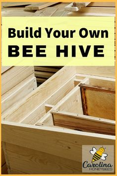 How to Build a Beehive of Your Own Tips for learning how to build a honey bee hive of your own. Building A Beehive, Bee Hives Boxes, Honey Bee Hives, Honey Bees, Honey Bee Box, Raw Honey, Bee Hive Plans, Beekeeping For Beginners, Raising Bees