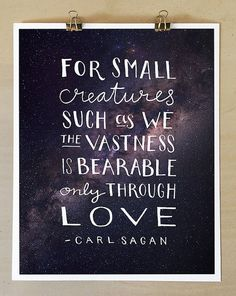 For small creatures such as we the vastness is bearable only through love. - Carl Sagan