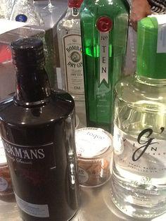 Taller Cata Gin Tonics