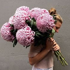 Check out these disbud beauties!!! Giant chrysanthemums from katiemarxflowers