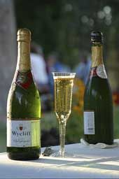 The champagne picnic is a treasured part of the culture and tradition of the Britt Classical Festival.