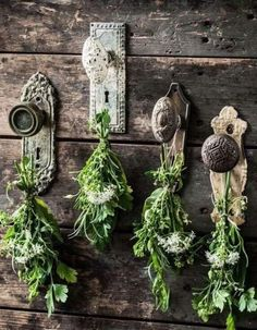 3 Rustic DYI Herb Crafts: Learn to Make a Home Decor Wreath, Dried Soup Holiday . CLICK Image for full details 3 Rustic DYI Herb Crafts: Learn to Make a Home Decor Wreath, Dried Soup Holiday Gift and Tea Swags with Beau. Vintage Garden Decor, Rustic Garden Decor, Garden Decorations, Vintage Gardening, Vintage Door Decor, Rustic Gardens, Decoration Party, Vintage Deck Ideas, Old Door Decor