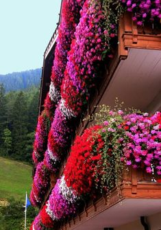 beautiful flower boxes on the balcony summer decoration