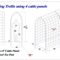 This is a simple and easy-to-build climbing trellis, either permanent or seasonal, for all types of climbing or vining plants. Diy Garden Fence, Veg Garden, Raised Garden Beds, Fenced Garden, Arbors Trellis, Diy Trellis, Garden Trellis, Cattle Panel Trellis, Cattle Panels