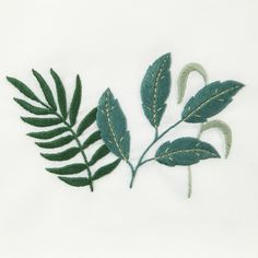 Fern & Toruousa Embroidery Pattern